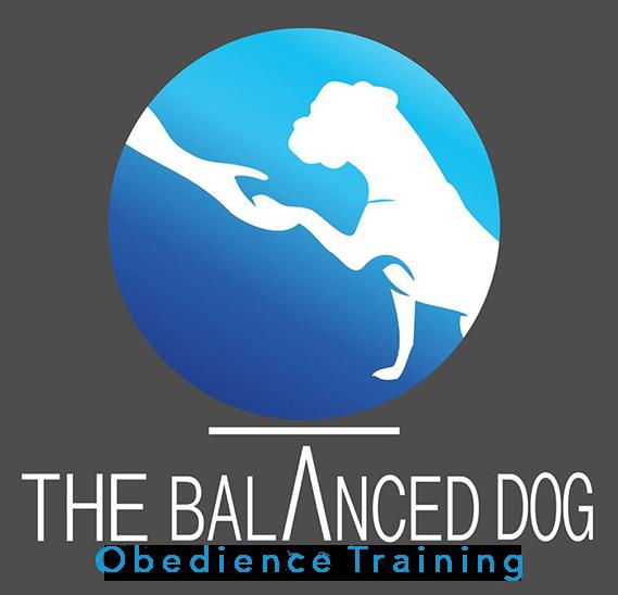 Dog Training & Obedience School | Midland, TX | The Balanced Dog